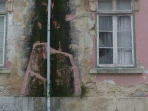 Aprenda como se livrar de mofo e bolor das paredes